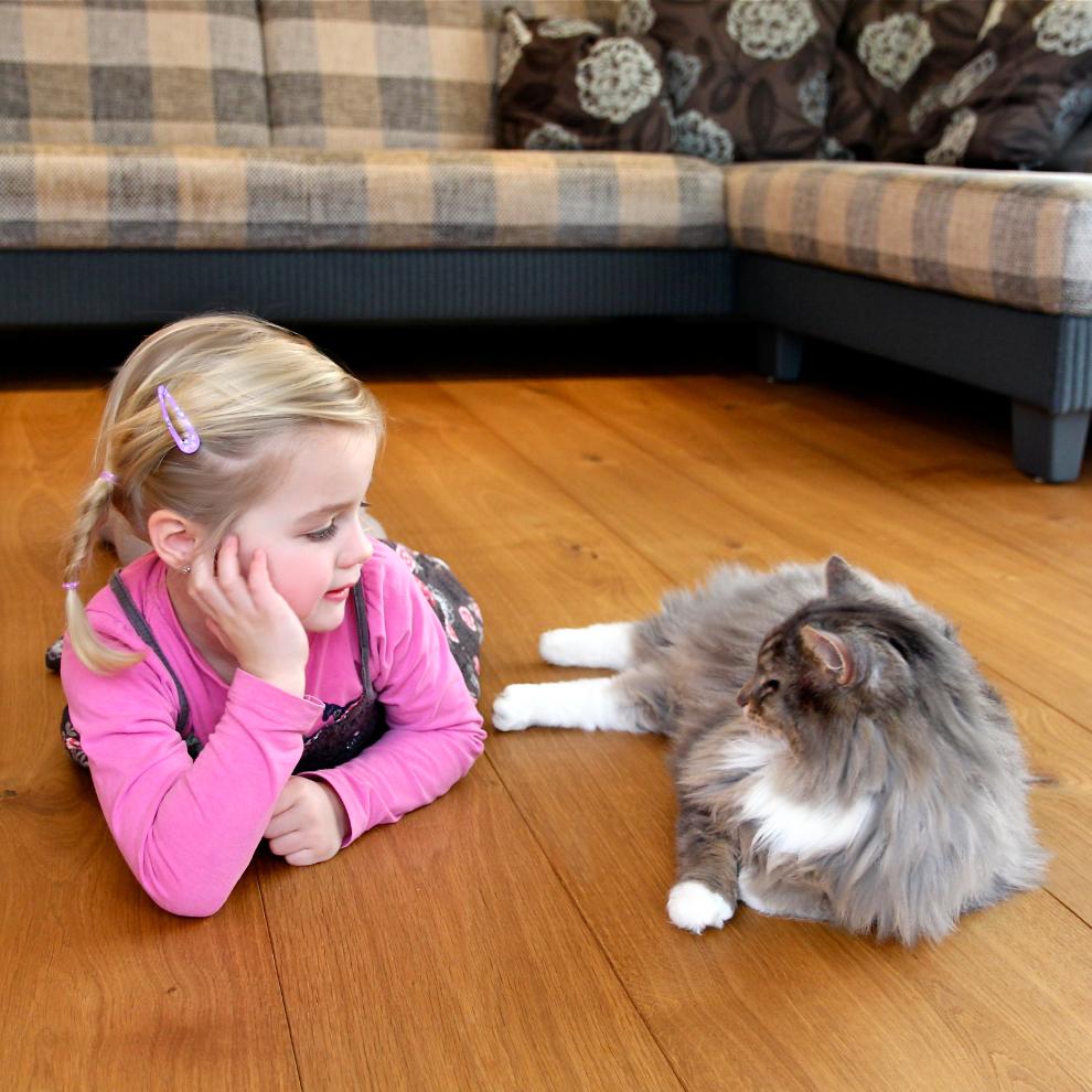 Kin mit Katze